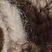 Woodland Wreath, Owls pattern