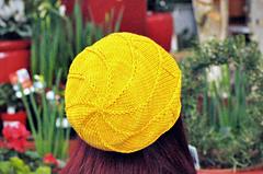 Vero Verto (Daffodil)