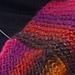 CrissCross Seven pattern