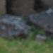 Zoo Adventure Cowl pattern