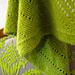 popp:y shawl pattern