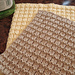 Boxy Dishcloth pattern