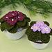 African Violets pattern
