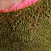 Anjou: Lacy tie-hem tunic pattern