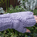 Twisted Seedling: Fingerless Mitts pattern