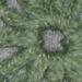 Little Dahlia pattern