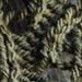 Wood Sorrel pattern