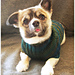 BucaLicious Sweater pattern