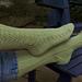 Summer Leafy Lacy Socks, sidelined pattern