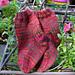 Sock-A-Roo's Baby Socks pattern