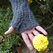 Hot little hands / chaud les mains pattern
