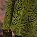 Frangipani pattern