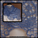 Navizence shawlette pattern