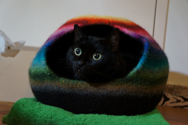 Crochet a cat cave for your favorite feline friend who loves to ... | 425x640