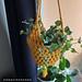 Granny Plantholder pattern