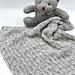 Brierley Preemie Blanket pattern