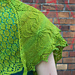 friendly neighbourhood spider-shawl pattern