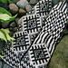 S. Exotic socks pattern