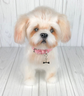 Ravelry: Shih Tzu dog pattern by Tatjana Ozolina