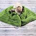 Columbine Baby Blanket & Throw pattern