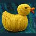 Quack-Quack DUCK! pattern