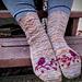 Pine Siskin Socks pattern