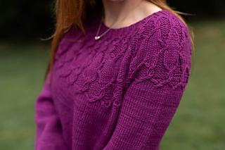 Alcyone Sweater yoke