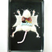Lab Rat pattern