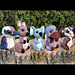 Cute Critters 4: Australian Edition pattern