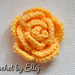 Chiniese Rose. 3D flower pattern
