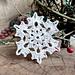 Frozen Flower Snowflake pattern