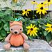 Pumpkin Patch Bear pattern