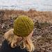Suovu Hat pattern