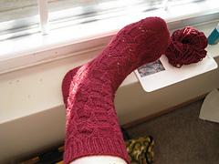 Small Wings sock #1