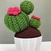 Ball Cactus pattern