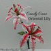 Candy Cane Oriental Lily pattern