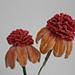 Echinacea Coneflower pattern