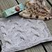 Silver Sands Washcloth pattern