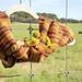 Autumn Cowl pattern
