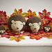 Haggis Hedgehog & Family pattern