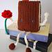 Libro de Sant Jordi / Saint George's book pattern