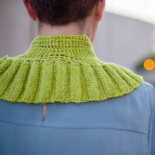 Back view of collar
