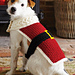#25 Santa Dog Coat pattern