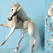 043 Horse White Dream with wire frame pattern