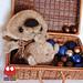 157 Sweet Bear Mimishoon pattern