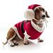 Santa Puppy pattern