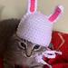Kitten Bunny Beanie/ Hat pattern
