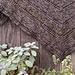 Fenna Shawl pattern