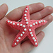 "little toy ""Starfish"" pattern"