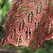 Copper Beech pattern